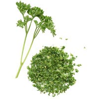 40091 - PARSLEY COPPED