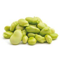 40828 - BROAD BEANS PEELED