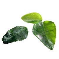 42854 - KAFFIR LIME LEAVES