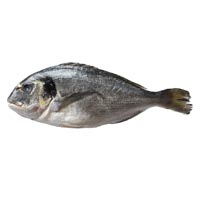 43458 - BREAM WHOLE