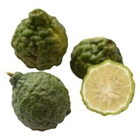 46628 - KAFFIR LIME WHOLE M